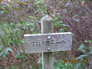 This way to the Trail!