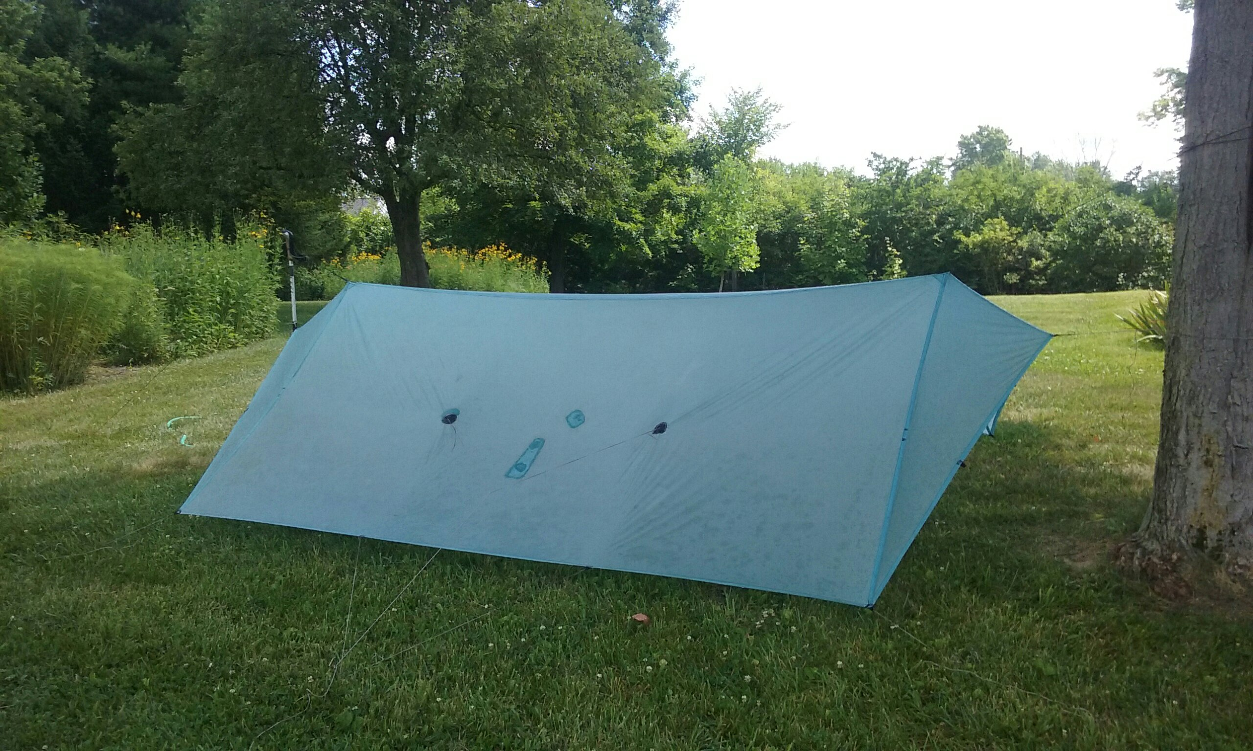 Light blue tarp on a lawn